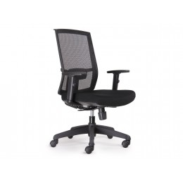 Rapidline Promesh Chair H/Back Adjustable Arms 5 Star Base Black